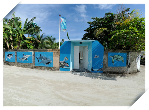 Maldives diving center